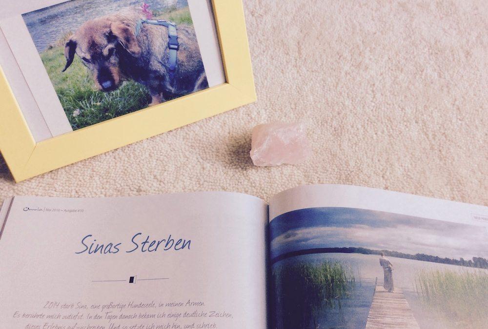 Sinas Sterben – Omnia Magazin